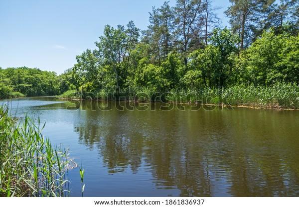 natural-landscape-river-flowing-wooded-6