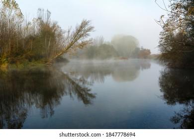 Natural landscape with the Órbigo River, riverside vegetation and fog during autumn. Province of León, Spain.