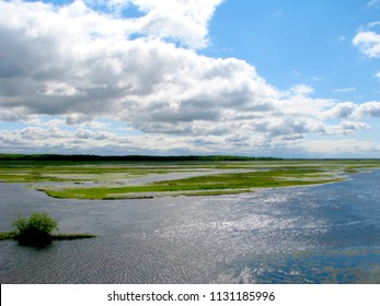 Natural lanscape width marsh river in Poland. Valley of Biebrza National Park.