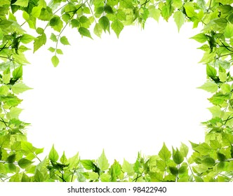 Natural leaves border on white background