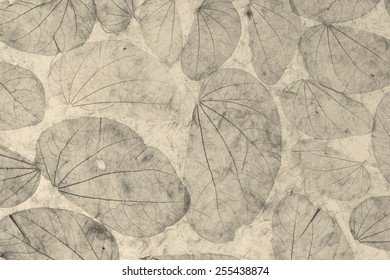 Natural leaves paper texture black and white background