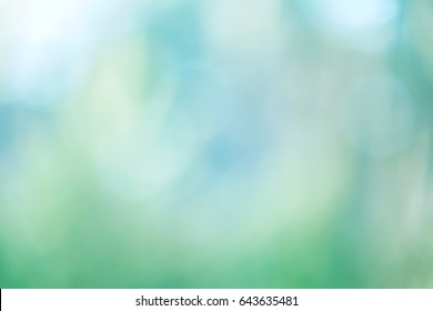 Natural light concept, abstract blurred background from nature