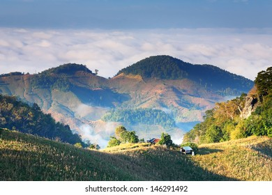 Natural light in the misty mountains in Nan Province,Thailand