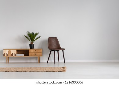 Natural linen rug on the floor of spacious bright living room interior with leather chair and wooden cabinet with plant in black pot, real photo with copy space on empty grey wall