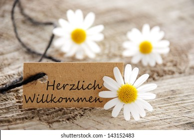 a natural looking banner with the german word herzlich willkommen which means welcome and white blossoms as background