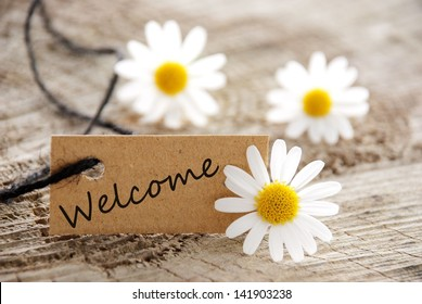a natural looking banner with welcome and white blossoms as background