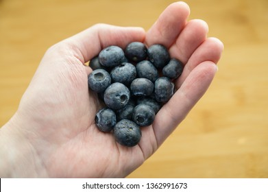 Natural looking blueberries in hand. Selective focus.