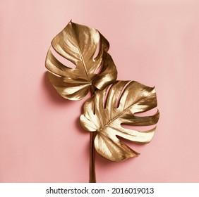 Le luxe naturel est toujours la vie. Feuilles de monstère dorée sur fond rose pastel. Concept créatif minimaliste d'art raffiné. Design plat. Fond d'écran exotique branché de botanique tropicale.