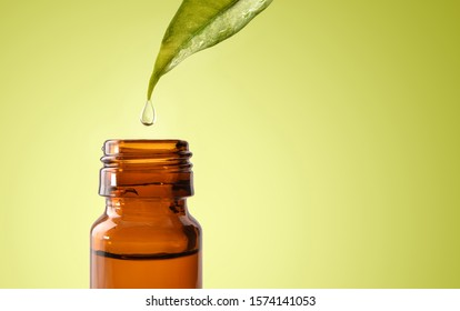 Natural medicine concept with leaf and drop falling into glass jar with medicinal liquid and green gradient background. Horizontal composition. Front view.