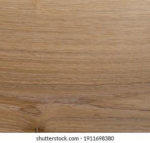 Natural oak wood - bright wood