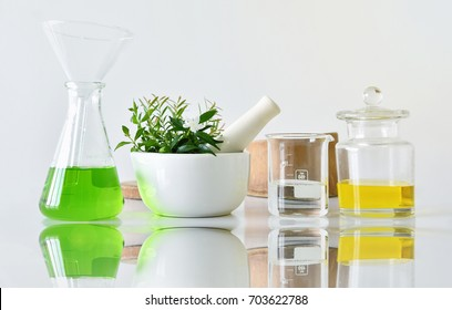 Natural organic botany and scientific glassware, Alternative herb medicine, Natural skin care cosmetic beauty products, Research and development concept. (Selective Focus)