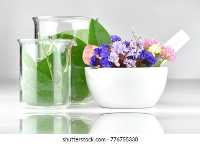 Natural organic botany and scientific glassware, Alternative herb medicine with mortar, Natural skin care beauty products, Research and development concept.