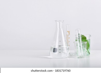Natural organic extraction and green herbal leaves, Scientific glassware in laboratory.