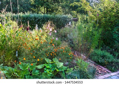 Natural Organic Gardening With Permaculture Showing A Garden Section With Seven Classical Layers In The Early Summer Sun