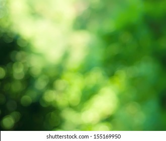 Natural outdoors bokeh background  in green and yellow tones