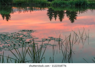 Natural Park of Biebrza Valley - sunrise over medow and pool and reflection on water.
