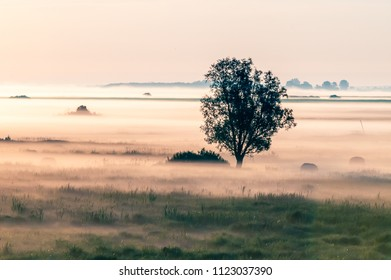 Natural Park of Biebrza Valley - sunrise over medow and pool