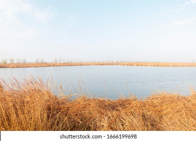 The natural park of the delta del ebro in Tarragona, Spain