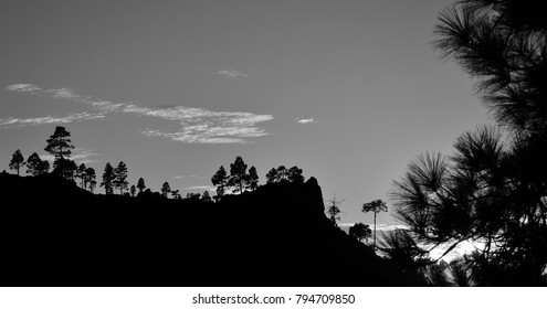 Natural park of Pilancones at sunset with monochrome effect, Gran canaria, Canary islands