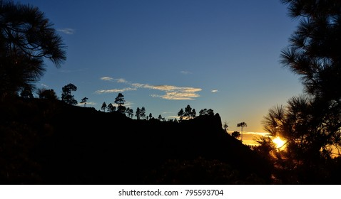 Natural park of Pilancones at sunset, summit of Gran canaria, Canary islands, Spain