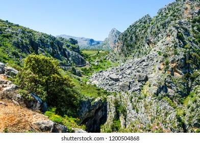 Natural Park of the Sierra de Grazalema, Montejaque, Valle del Guadiaro, Serrania de Ronda, Malaga, Andalusia, Spain, Iberian Peninsula
