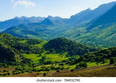 Natural Park of the Sierra de Grazalema, Montecorto, Andalusia, Spain, Iberian Peninsula