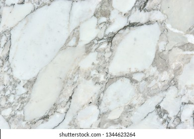 """natural pattern of marble white color polished slice mineral. Super high resolution."""" Marble Arabescato Vagli """""""