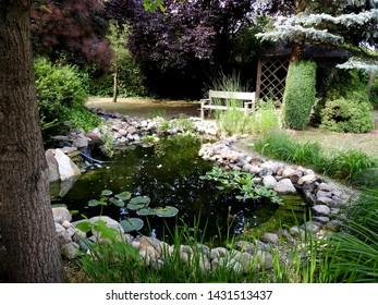 Natural pond in polish garden.  Garden design.