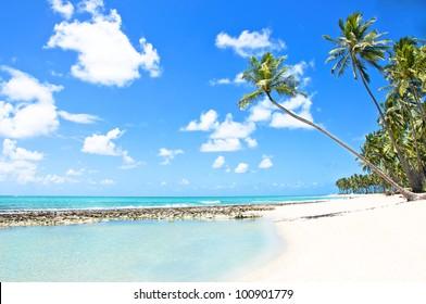 Natural Pool in a Tropical Beach in Brazil, Carneiros Beach, Pernambuco