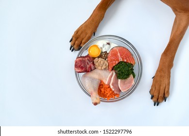 Natural Raw organic dog food in bowl and dog's paws on white background. BARF dog diet.
