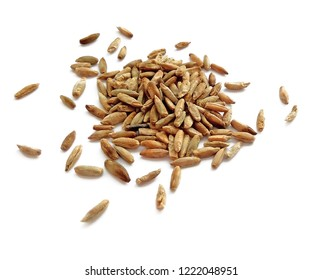 Natural raw rye grains isolated on white background. Close up photography