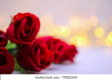 Natural red rose isolated on blur bokeh background , love concept