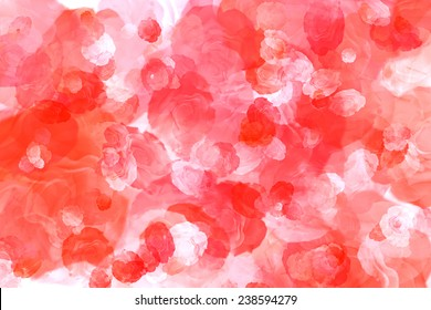 Natural red roses on the best big background. Background of roses. Red flowers background. Background with flowers. Flora red background. Valentines love background. Red abstract background.