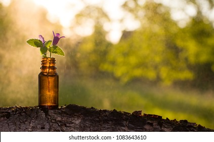 Natural remedies, aromatherapy - bottle