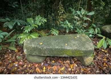 Natural rock bench seating design, made of stone slab - Bukit Timah Nature Park, Singapore