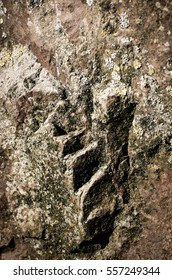 Natural rock with unusual texture.