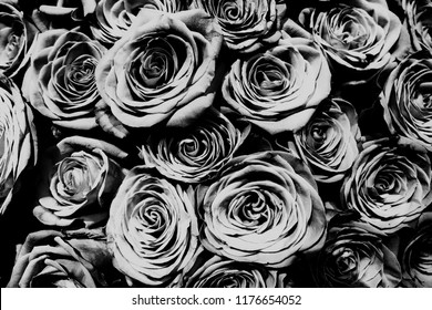 Natural roses bouqet background, black and white.