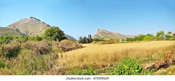 Natural rural landscape panorama with mountains in background, grassland in front, trees aside - blue sky