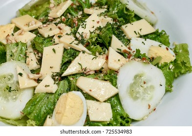 natural salad, lettuce, cucumber, cheese and egg