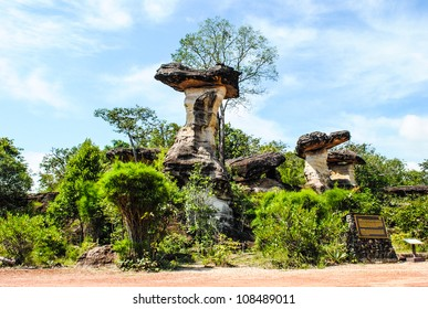 Natural scene: Mushroom stone with plant environment and bright sky at Pha Taem national park in Ubon Ratchathani province, Thailand