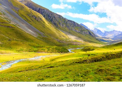 Natural scenery on the Tianshan Mountains in autumn
