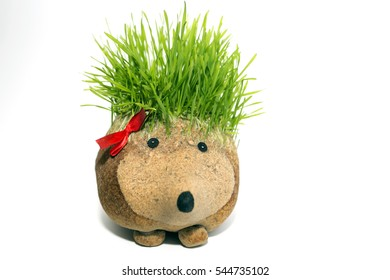 Natural sculpture of hedgehog with spines made by growing wheat. Traditional art in some Christian countries for Christmas and New Year