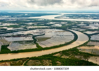 Natural shrimp farming in Tarakan, Indonesia. The Shrimp from this area was claim the best in the world. They are  grows naturally in the pond without any additional  food and machinery