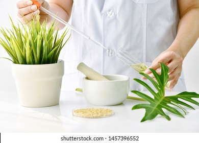 Natural skincare cosmetics research and development concept, Doctor formulating new beauty products from organic natural plants, Pharmacist mixing pure extract essence in tube.