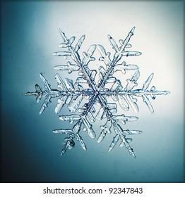 natural snowflake macro