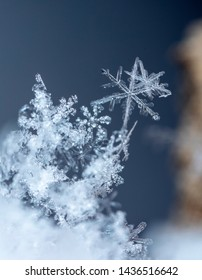 natural snowflakes on snow. the picture is made at a temperature of-10 C