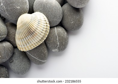 Natural spa elements- seashell with starshell and stones on white