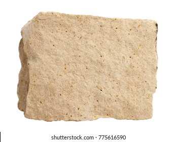 Natural specimen of foraminiferal ooze limestone - organogenic sedimentary rock, relatively soft and porous variety of limestone, used for the interiors, reliefs, carvings and sculpture, on white