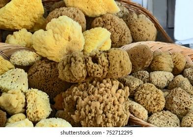 Alot of Natural sponge in basket in Souvenir shop in Greece