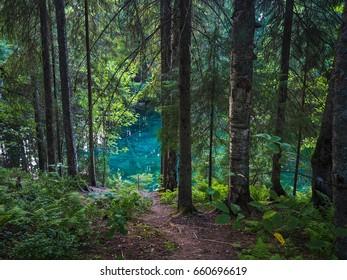Kiikunlähde natural spring in southern Finland.